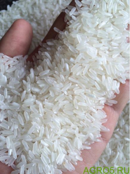 Рис оптом от производителя цены разные