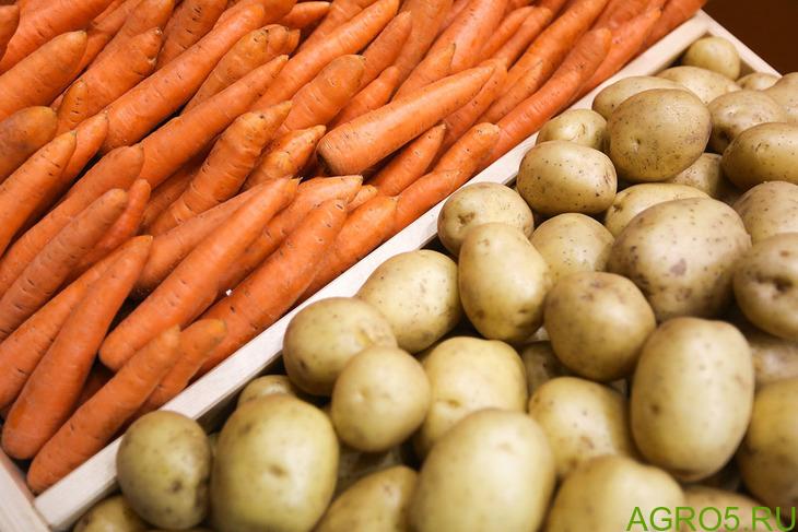 Продажа картофеля и овощей