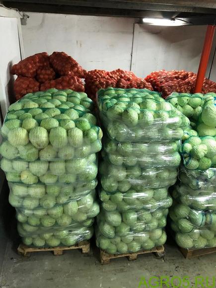 Занимаемся продажей овощей
