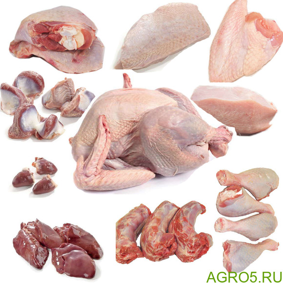 Мясо индейки оптом от производителя