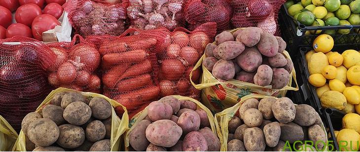 овощи оптом в москве