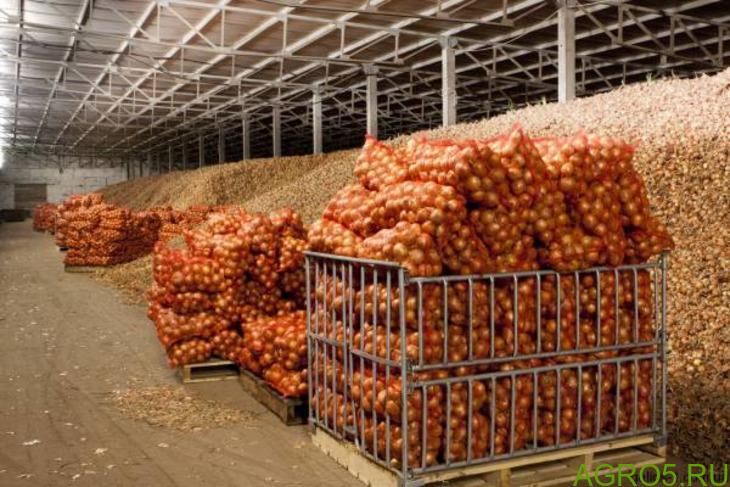 картофель оптом цена 15 руб
