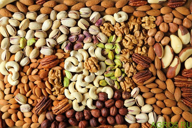 Орехи, сухофрукты, специи.